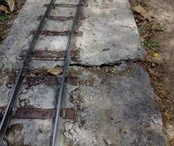 Reparació de la plataforma malmesa per les arrels d'un arbre